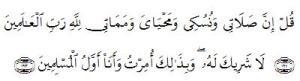 surat al an'am 163